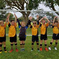 Kids Team Sport Noosa